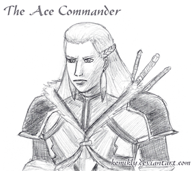Ace Commander by KemikLy