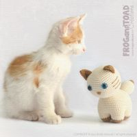 Chat - Chaton - Cat - Kitty - Amigurumi Crochet by FROG-and-TOAD