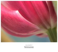 Sensuous by signmeupscotty