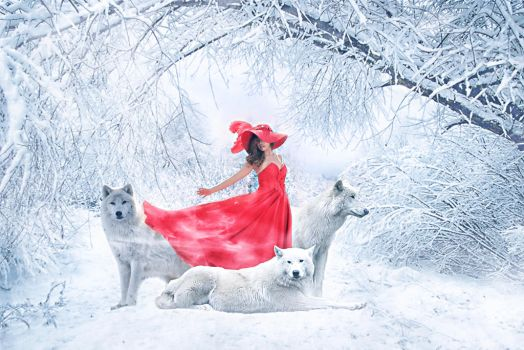 Madamme Red and the Three Wolves by jorince11