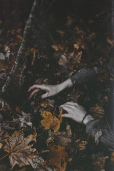 When We Fall by NataliaDrepina