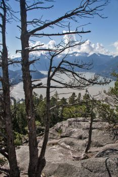 Howe Sound from Big Chief Mt in Squamish by Rebacan