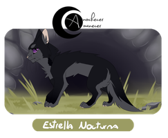 [AYA] Estrella Nocturna by HappyOreoDay