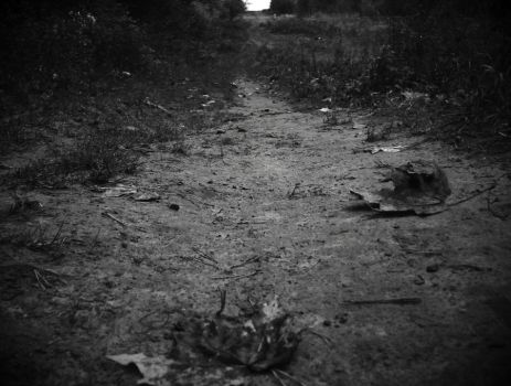 Lonesome road by Matthew-o
