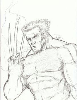 Wolverine 1-small by AP-Anderson