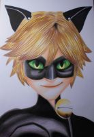 Chat Noir by R7artist