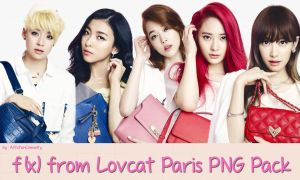 f(x) from Lovcat Paris PNG Pack by AffxtionComunity