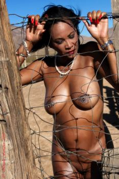 Fenced in by almory