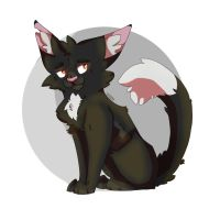 Ravenpaw - WARRIOR CATS FANART by TheMashedCat