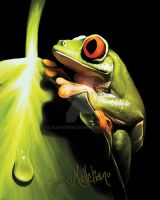 Tree Frog by ellastasia