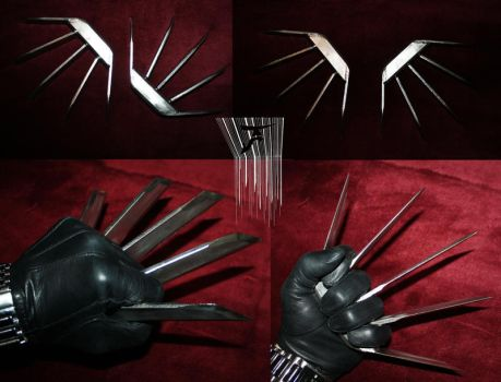Stainless Steel Claws - Tiger by altsy