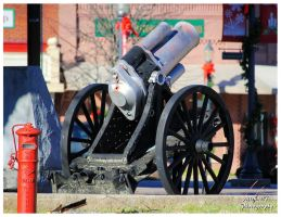An Old Cannon On The Square by TheMan268