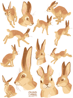buns by glamacabre