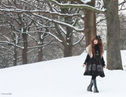 Walking in the snow I by FANUxSIRI
