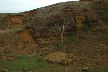 quarry 3 by BlissStock