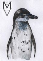 Penguin Watercolour by sarah-mca-art