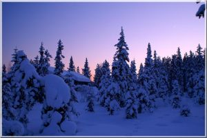 Lapland series .:2:. by amino