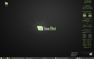Linux Mint 'Elyssa' by Shokked-crow