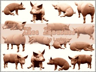 Pig Brushes by Lavica-Photoshop