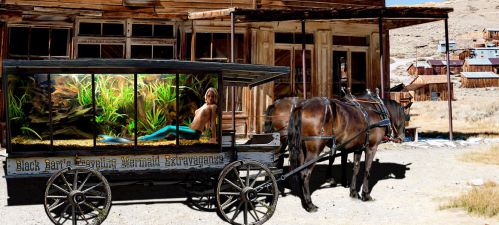 Black Bart's Traveling Mermaid Extravaganza by sirenabonita
