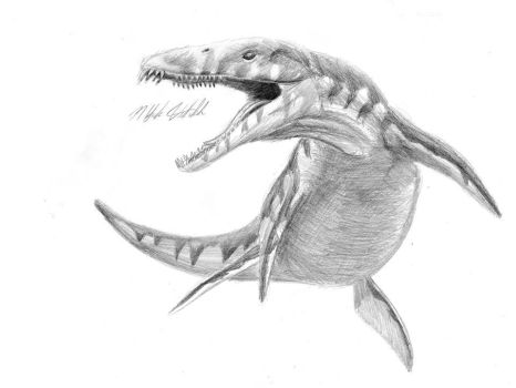 Prehistoric March - Liopleurodon by LittleFoxStudio