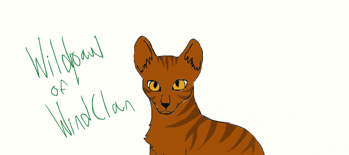 Wildpaw, My warrior cat! by kimbafan