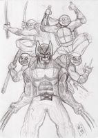 Wolverine and Tmnt by nic011
