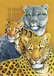 Totem Card: Leopards by synnabar
