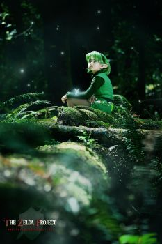 The Zelda Project: Waiting by Adella