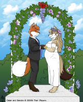 Wedding Picture by Calebfox