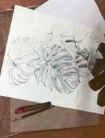 monstera by RantGoil