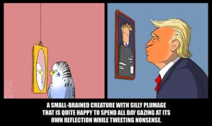 The US is run by a budgie. by jollyjack
