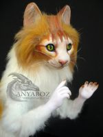 Tangerine Tabby Cat Room Guardian by AnyaBoz