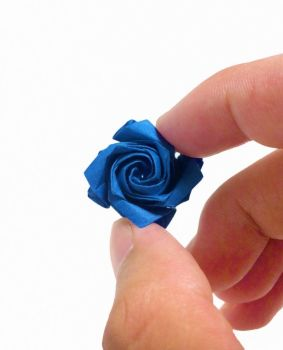 Miniature Rose by refold