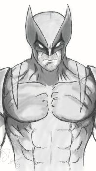 Wolverine from X-Men by OhAlAmin