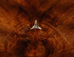 Marquetry into Mercedes-Benz with silver Star by larijone