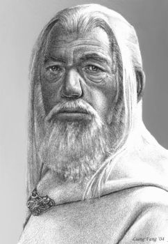 Gandalf the White by aragornbird