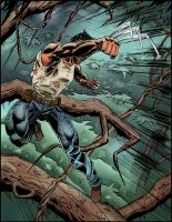 Wolverine enraged (color version) by ElieBongrand