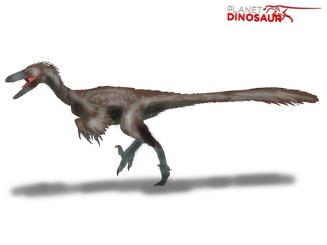 Planet Dinosaur - Troodon by Vespisaurus