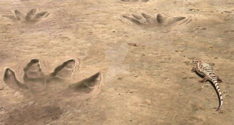 A caseid and some footprints of a larger synapsid by OscarSanisidro