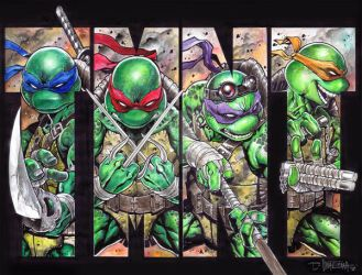 TMNT Water Color by emilcabaltierra
