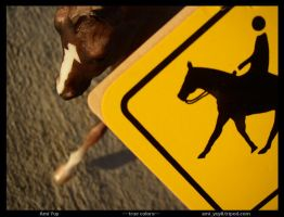 Orig - Caution: Horse Crossing by amiyuy