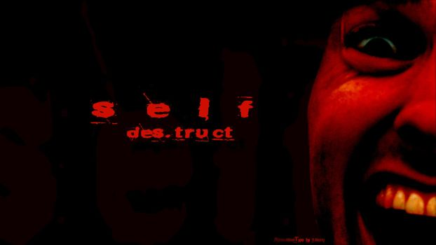 Self.Des.truct by beboo