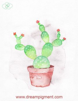 Prickly Pear Cactus by DreamPigment