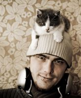 Z feat the mighty cat hat by c1p0