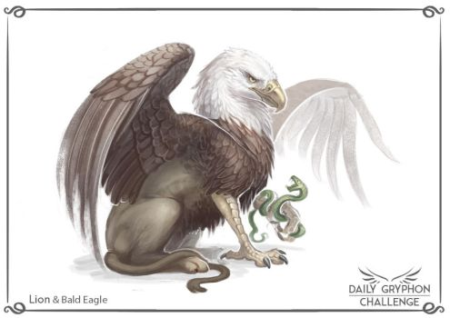 Gryphon Challenge 01 : Lion and Eagle by Pechschwinge