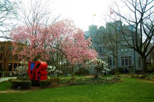 Penn in Spring by markdc