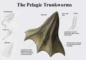 REP: The Pelagic Trunkworms by Ramul