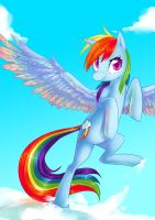 Request: Rainbow Dash by tamponandtwilaloop