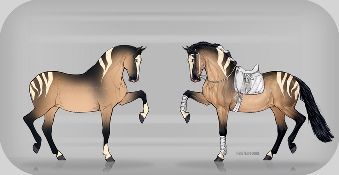 Horse Design Sale [$4] [CLOSED][PAYPAL] by TheAdoptArtist